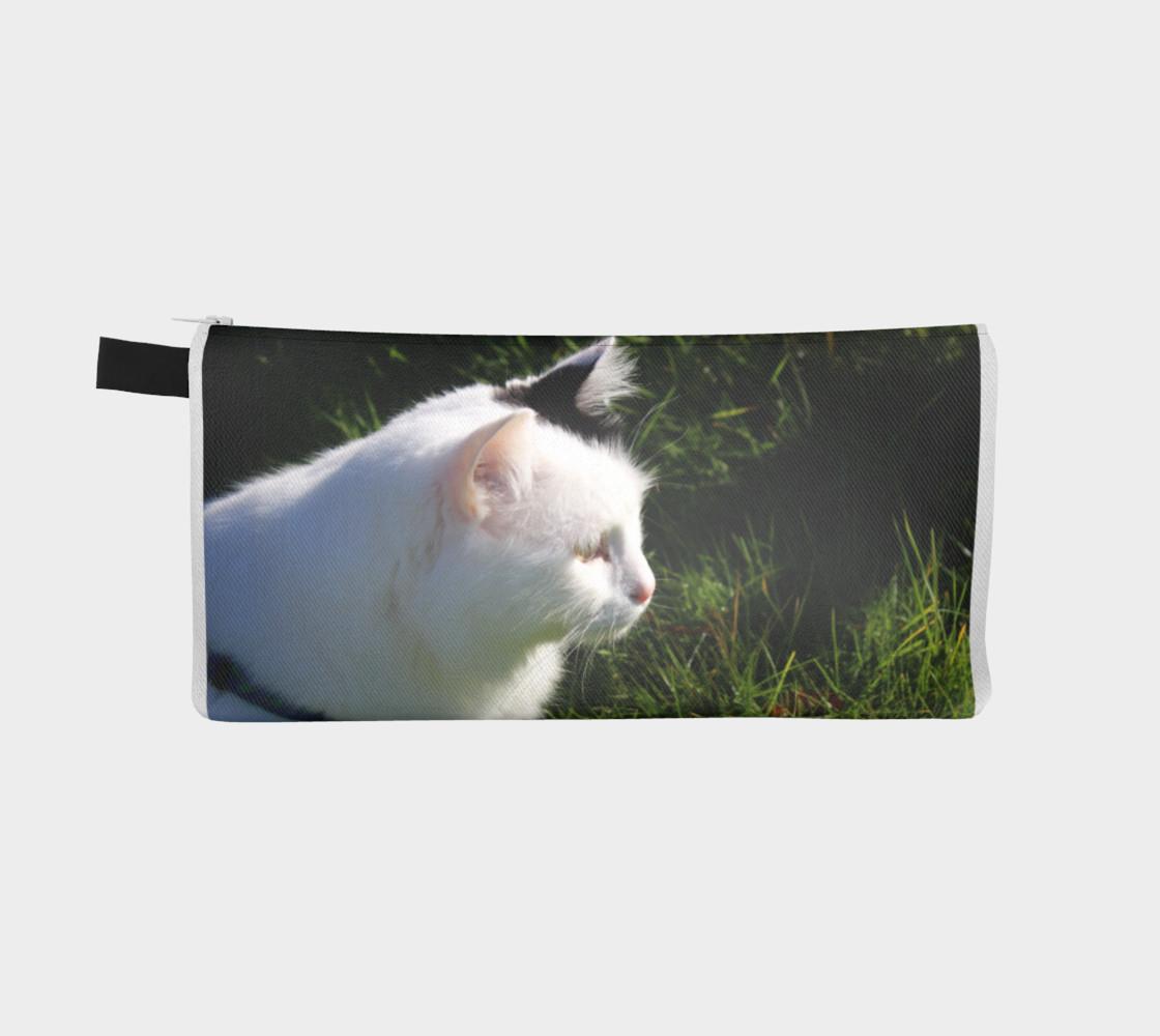 Aperçu de cat #2