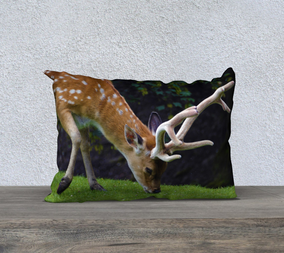 Fallow Deer preview #1