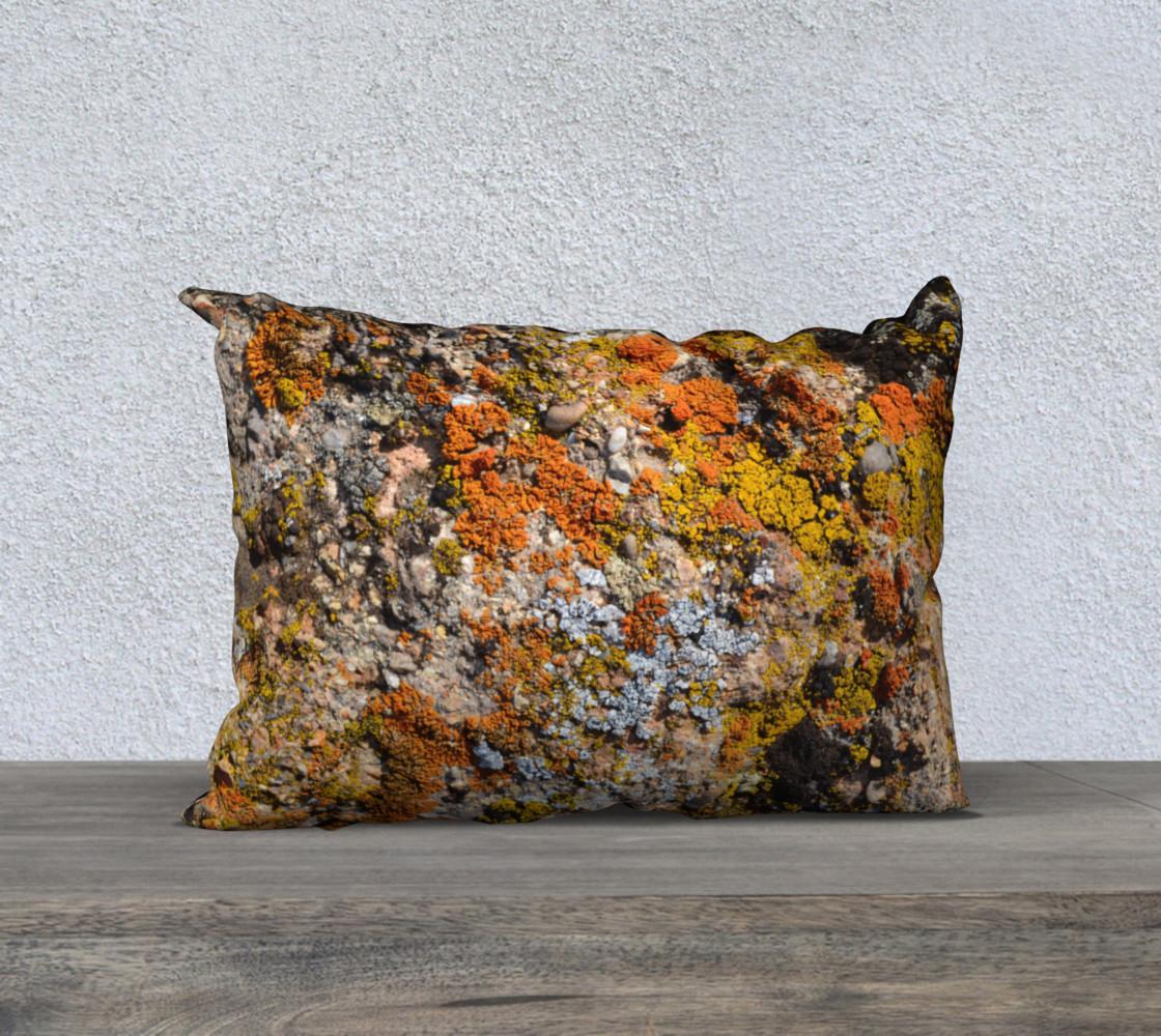 Calico Lichens preview #1