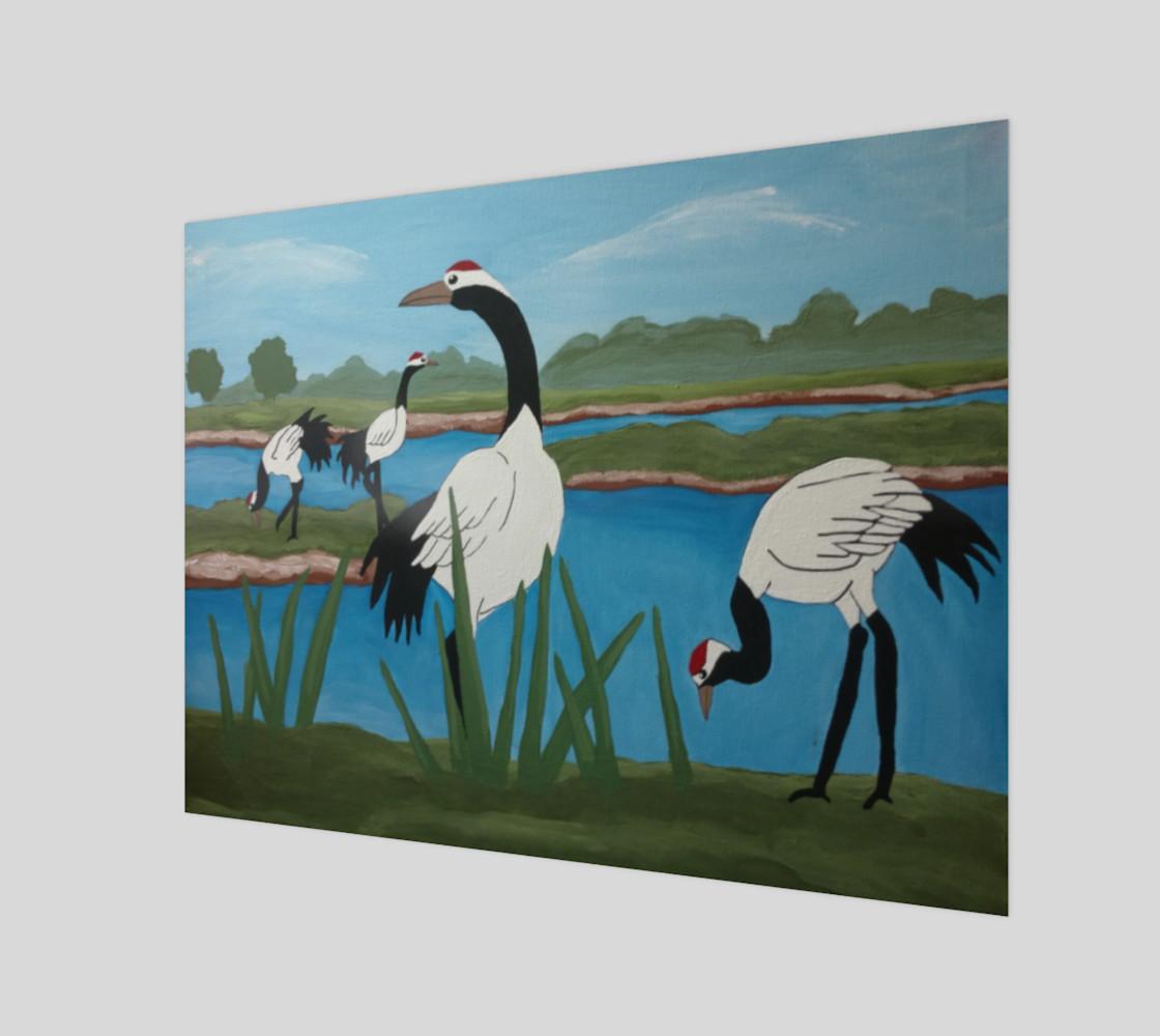Cranes preview #1