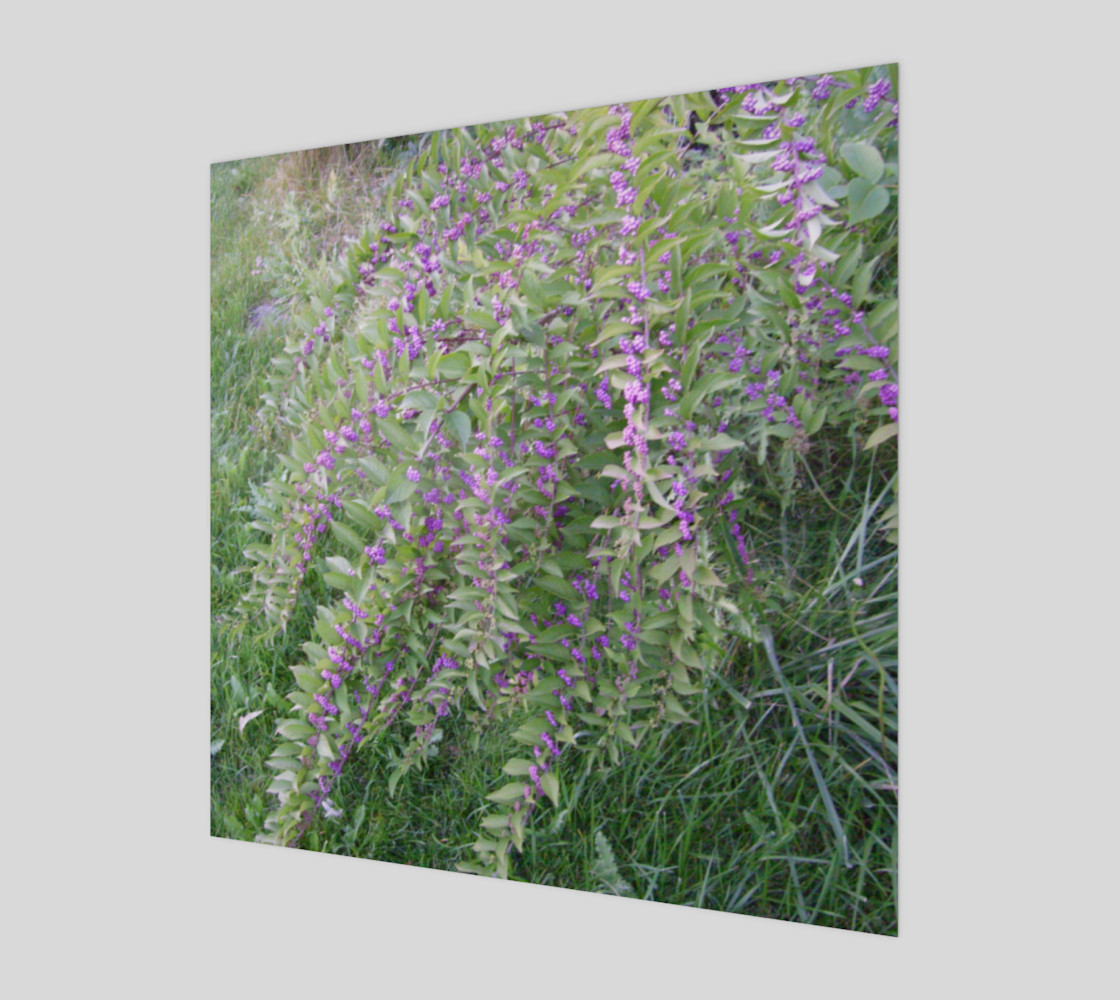 Bush with Violet Berries Wall Art preview #1