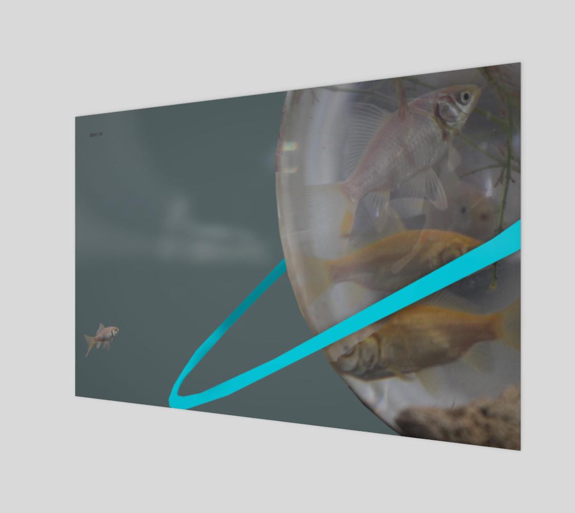 Aperçu de fish reentry #1