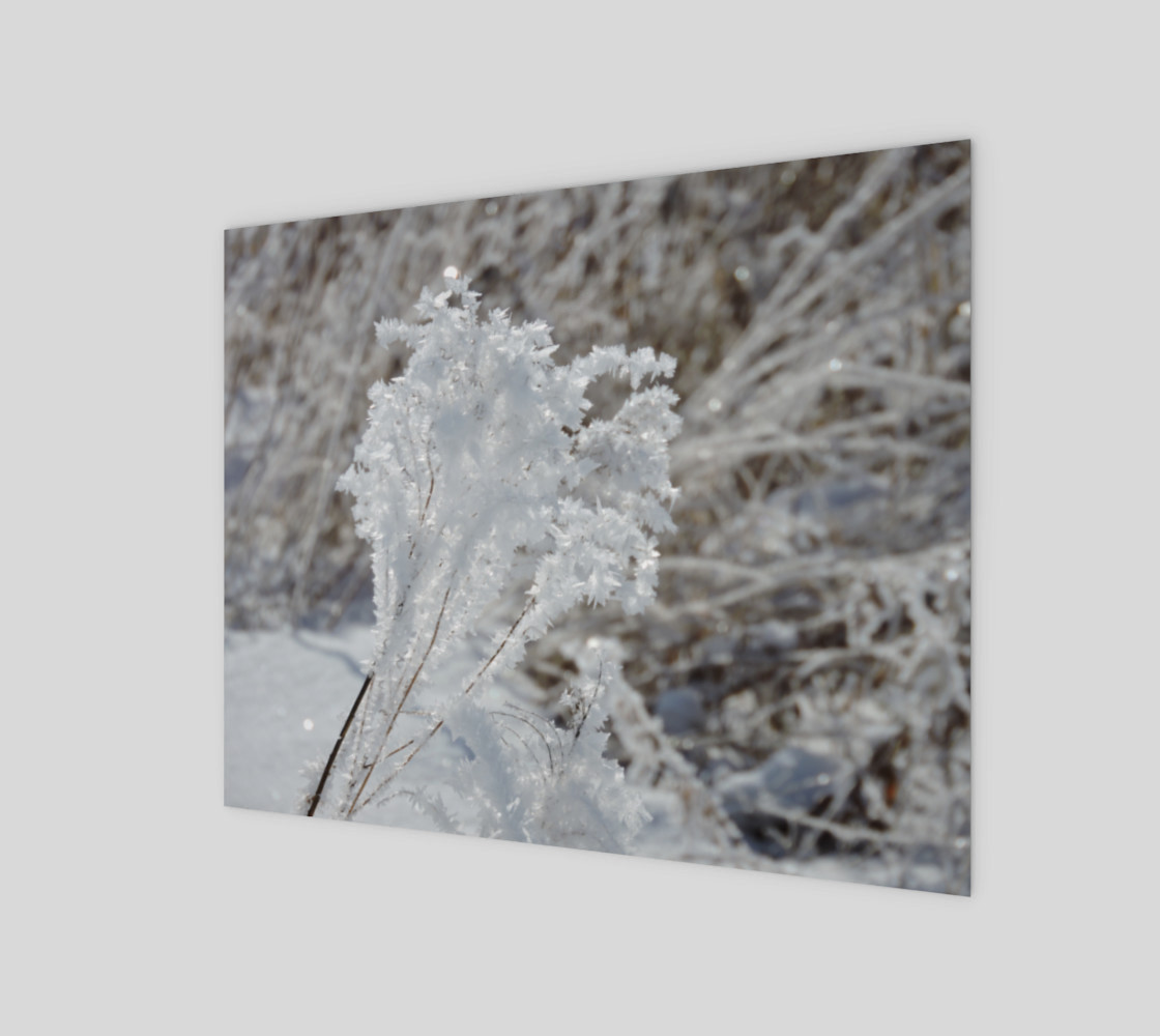 Frosted Feathered Plant 3D preview