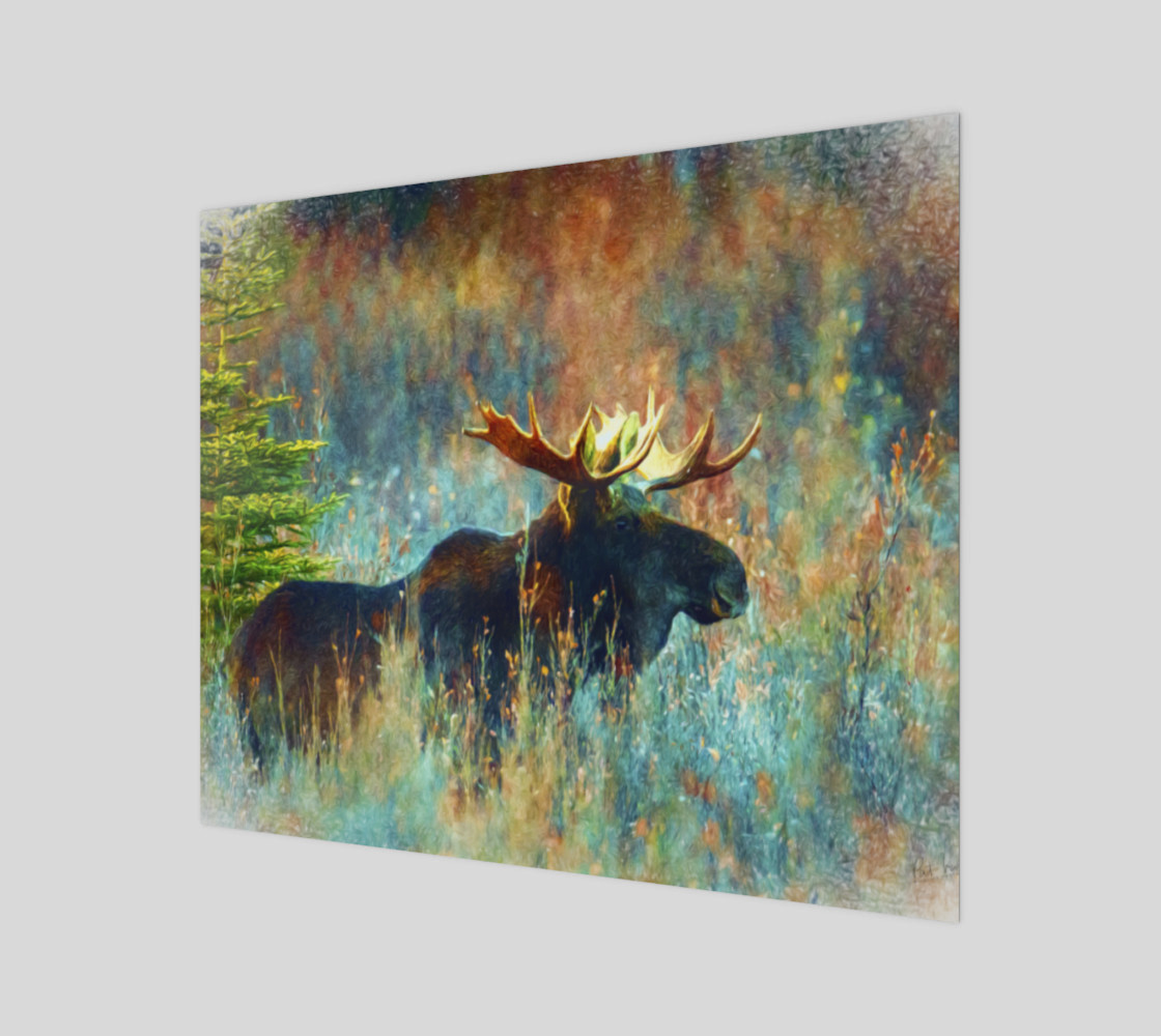 moose canvas preview #1