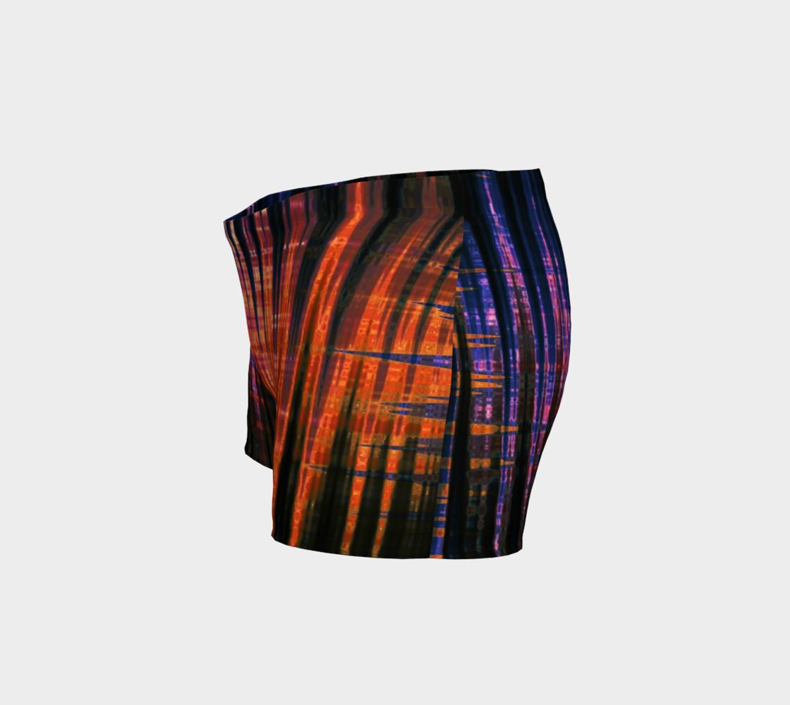 Grid Persuasion Shorts by Danita Lyn preview #2