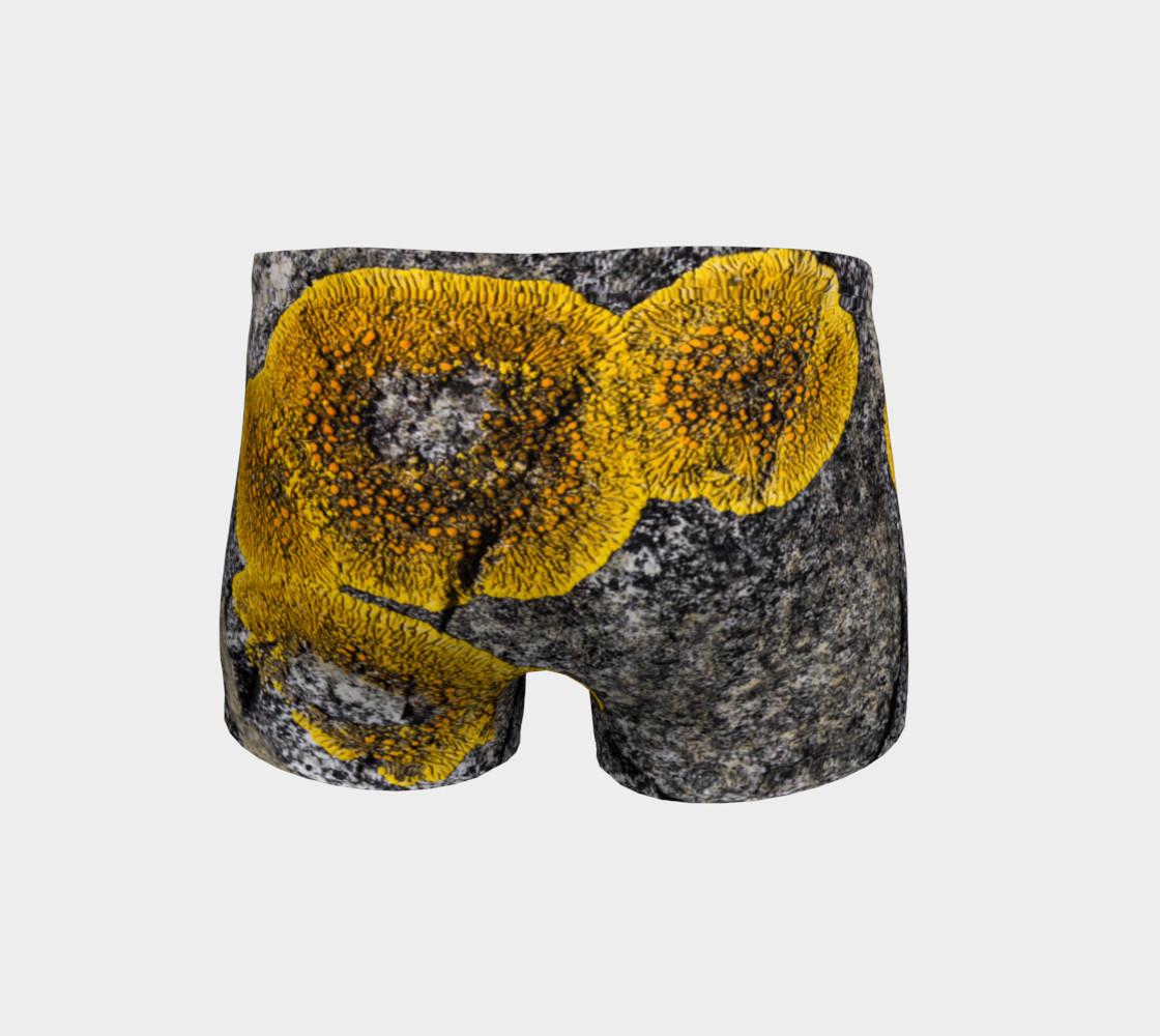 Lichen my Short Shorts! preview #4