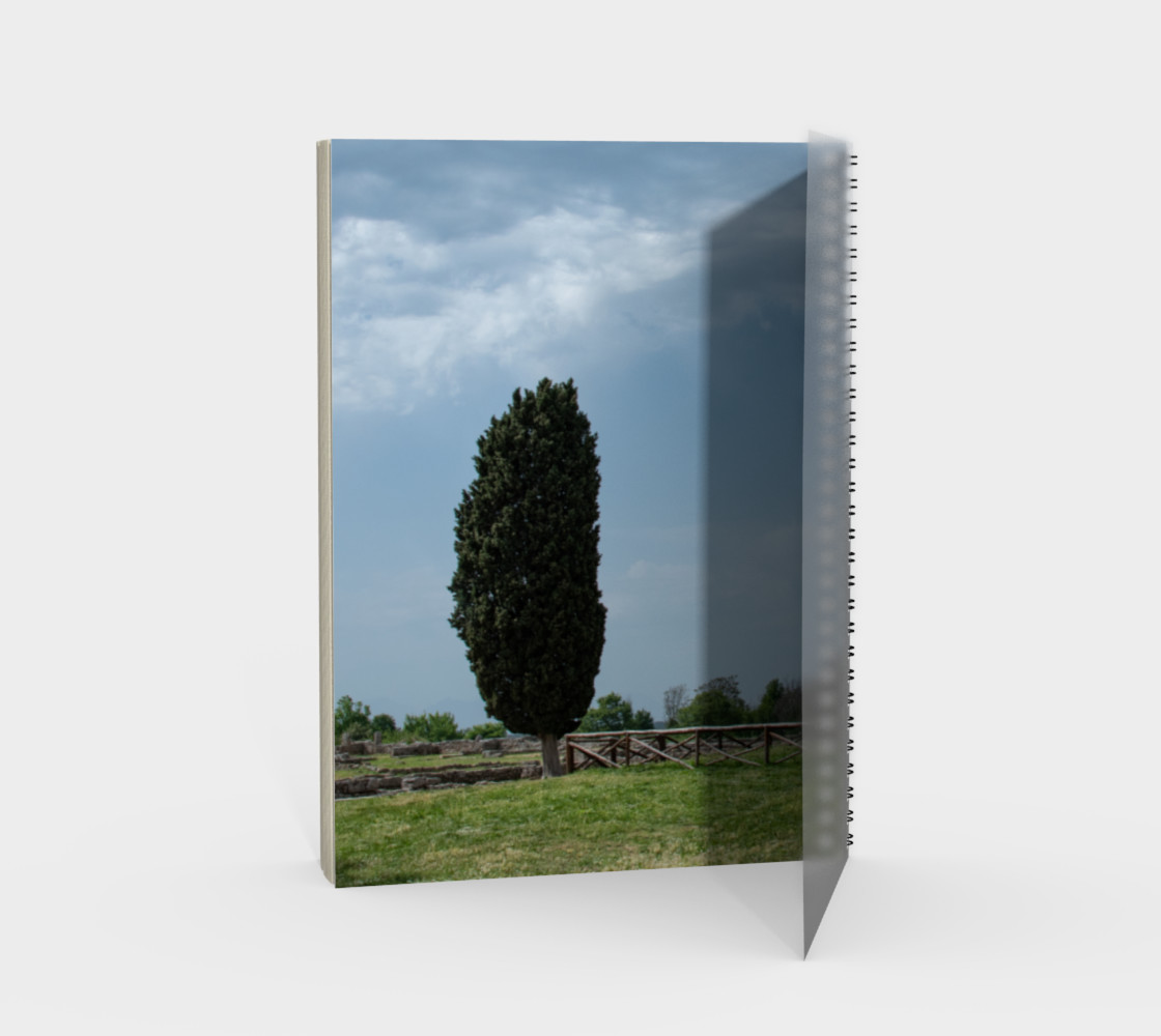 Utterly Italy Paestum Notebook preview #2