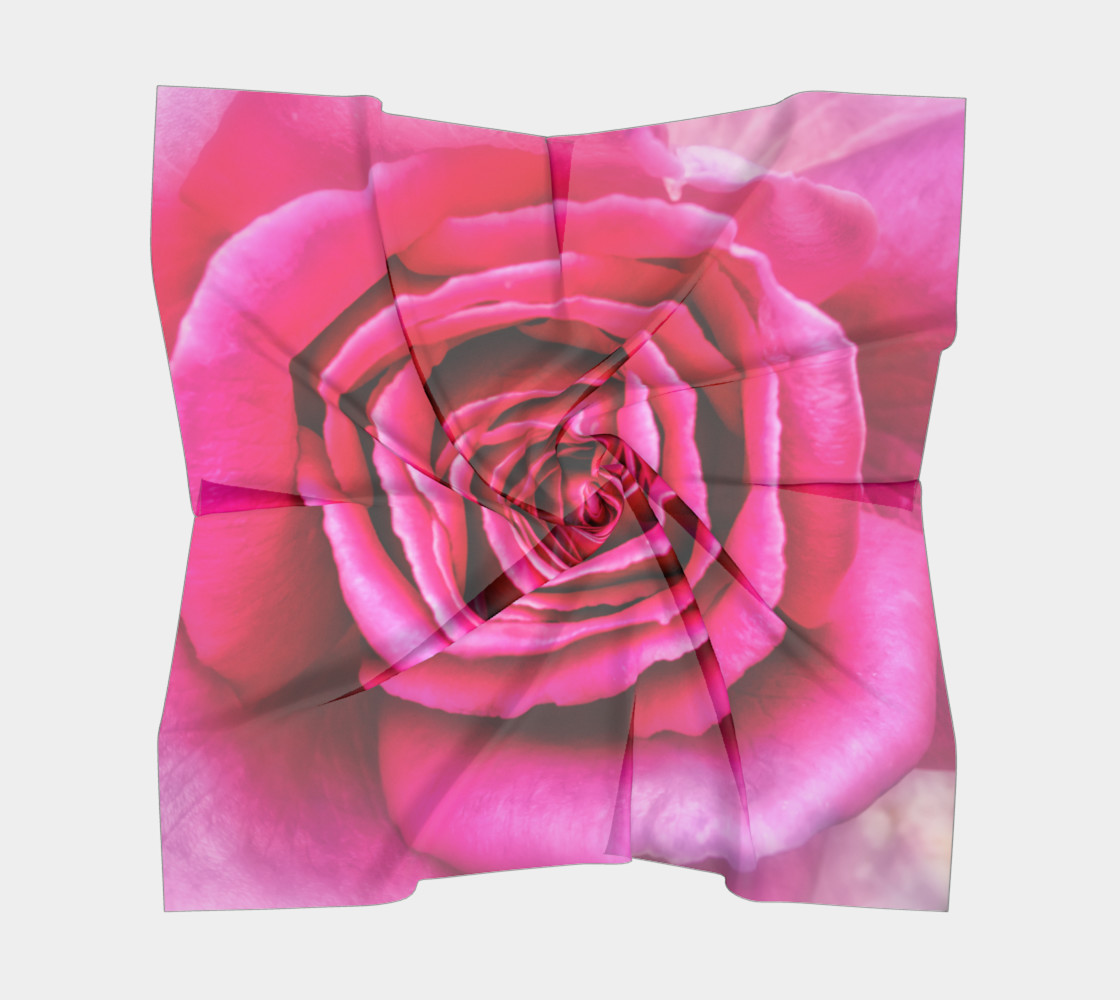 Hot Pink Rose Closeup thumbnail #6