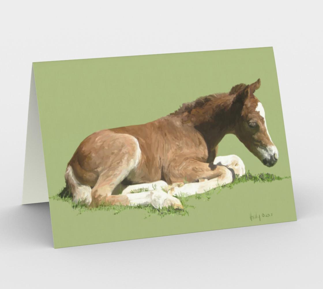 Aperçu de Welsh Pony foal #1