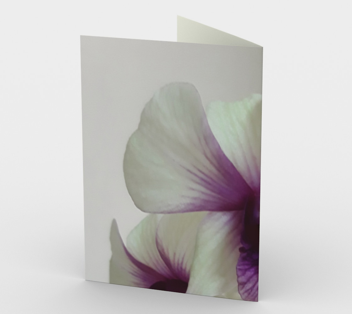 Fresh orchids. preview #2