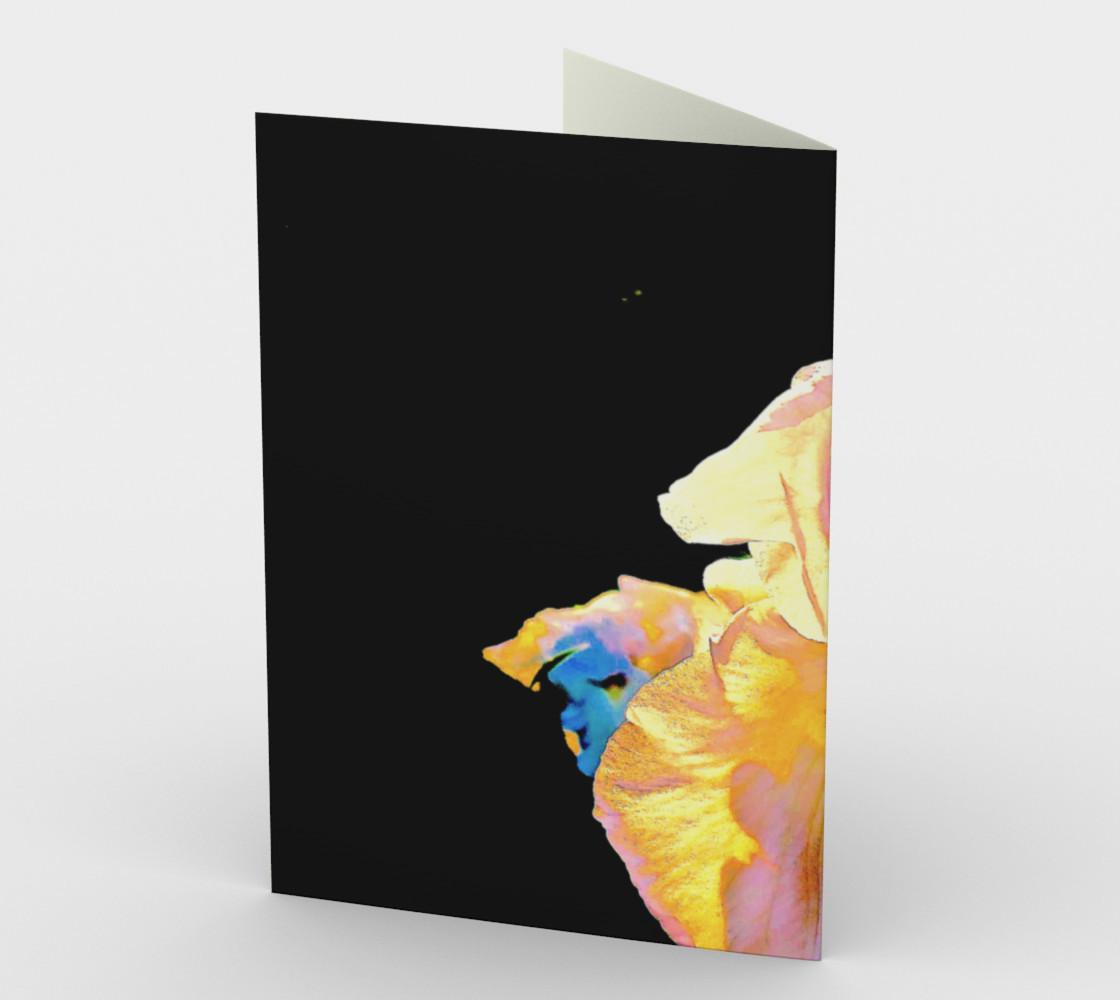 Iris Rainbow 0884 Variation 1  preview #2