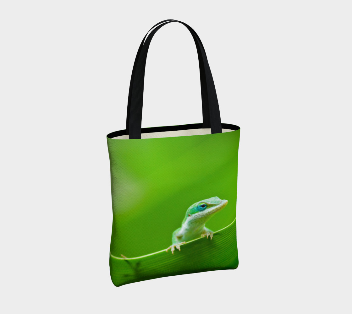 Aperçu de Anole verte / Green Anole #4