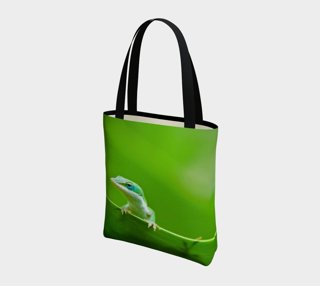 Aperçu de Anole verte / Green Anole #3