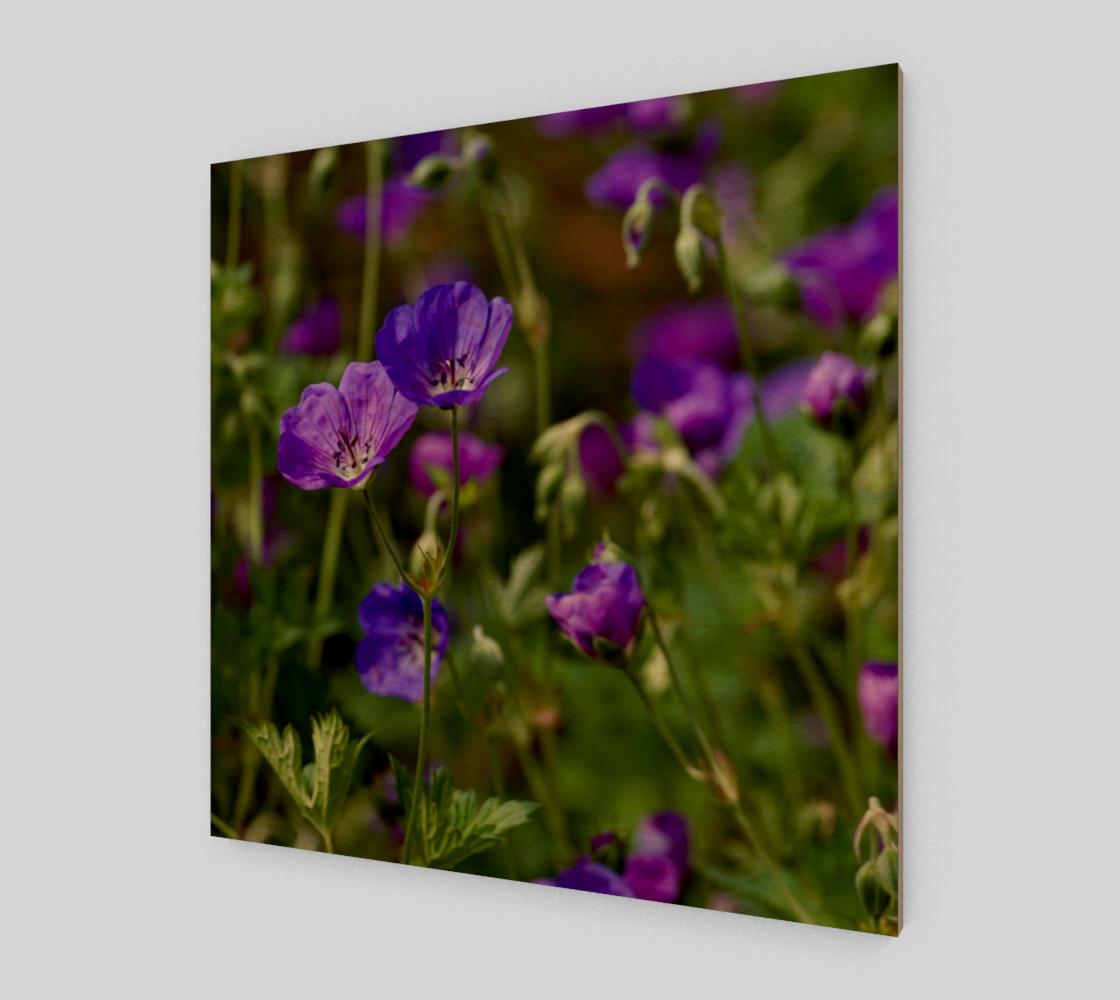 Purple Cranesbill Wall Art Canvas preview #1