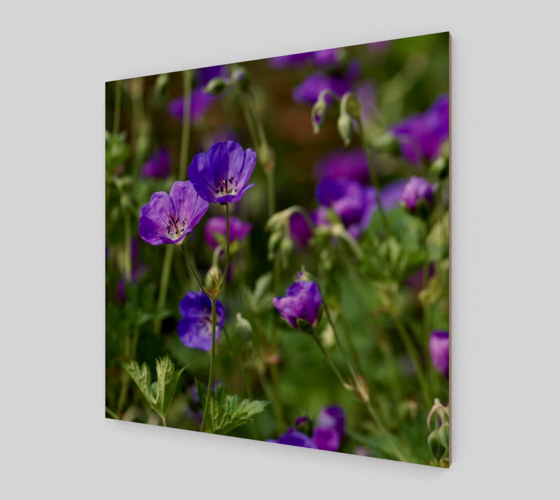 Purple Cranesbill Wall Art Canvas preview #2