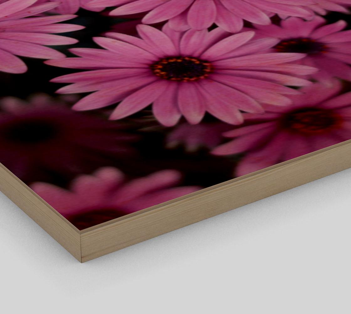 Pericallis Purple Flower Wall Art poster art print canvas wood print preview #3