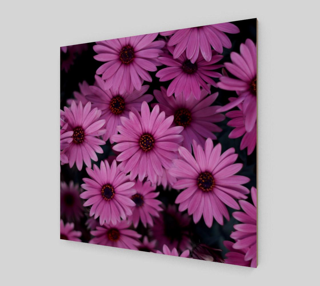 Pericallis Purple Flower Wall Art poster art print canvas wood print preview #2