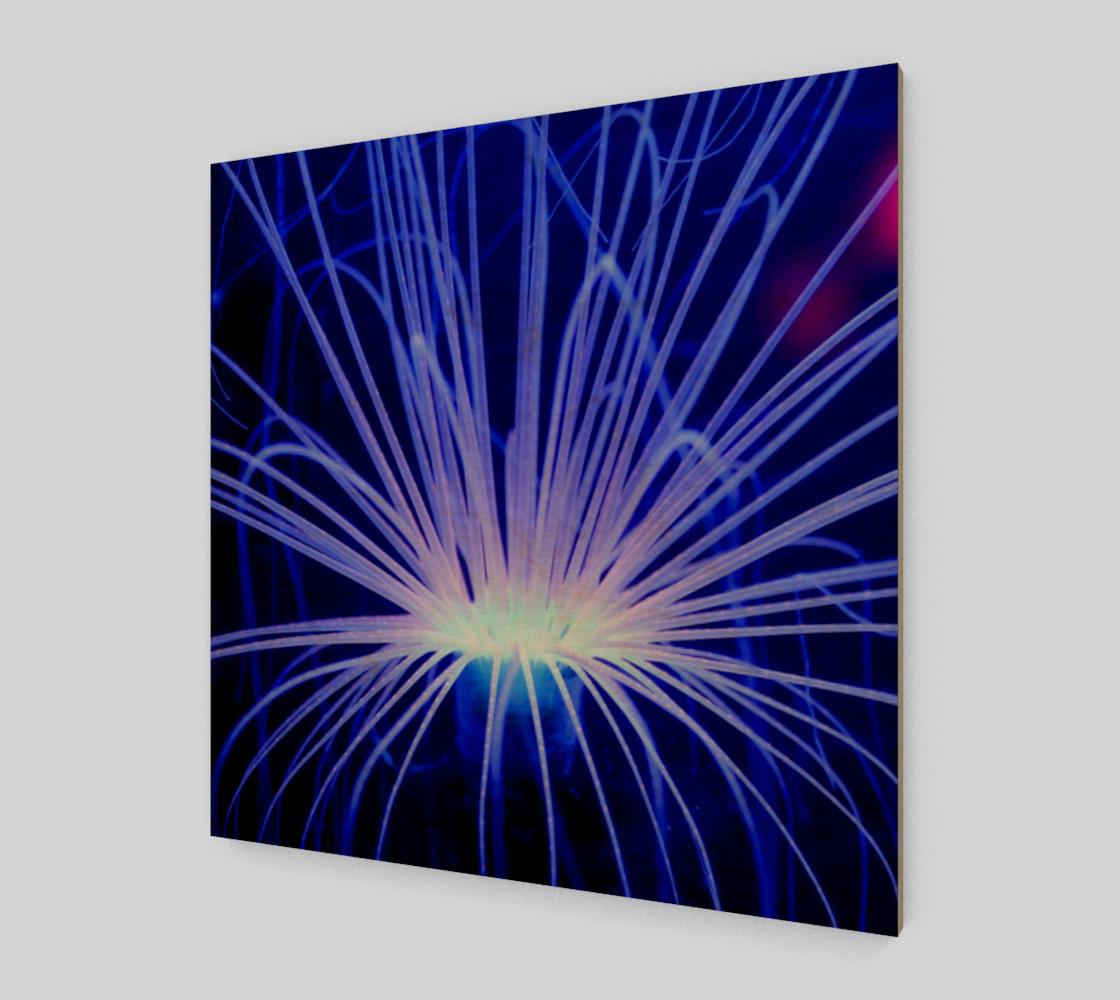 Purple Anemone canvas Wall Art poster art print wood print preview #1