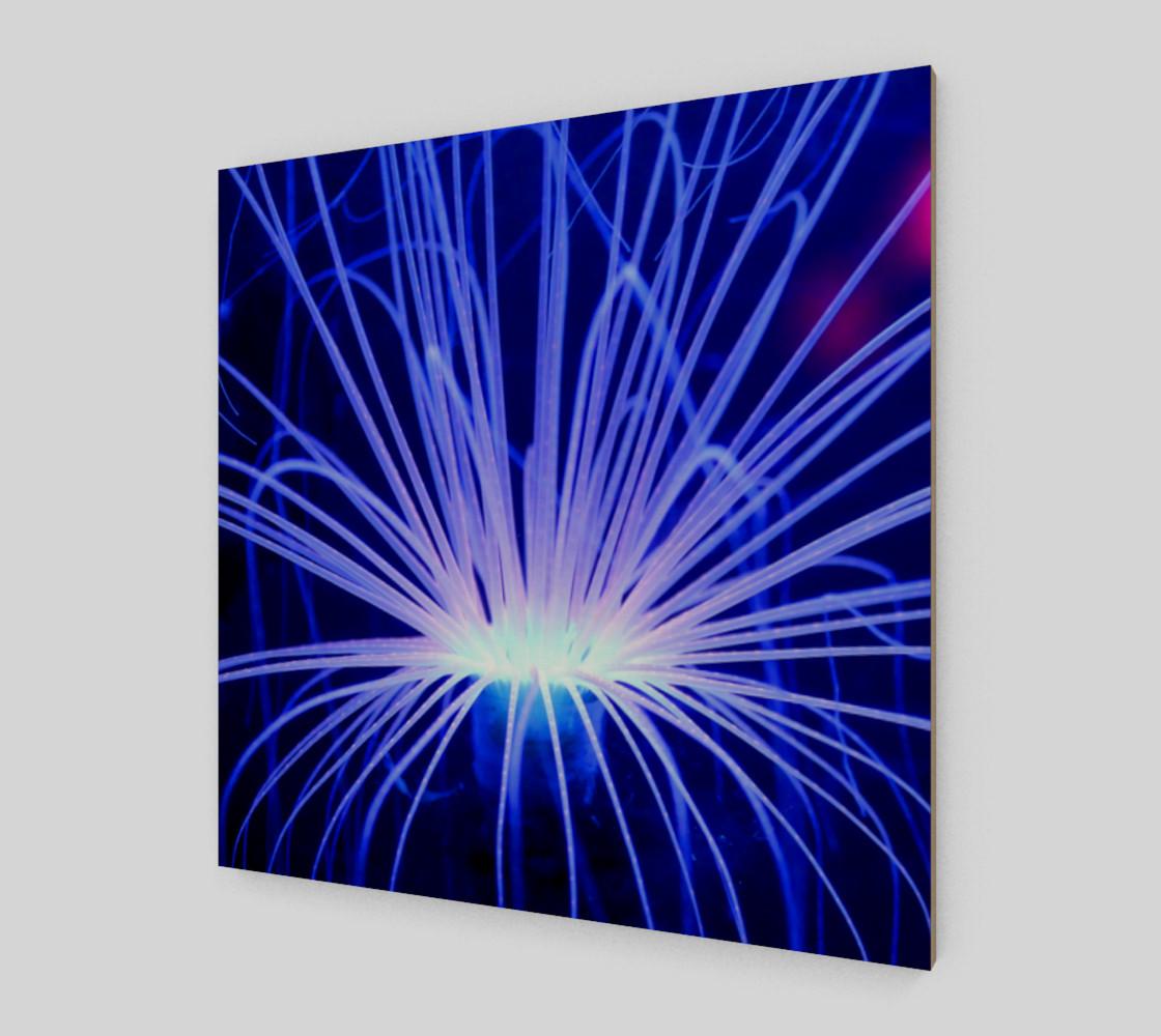 Purple Anemone canvas Wall Art poster art print wood print preview #2