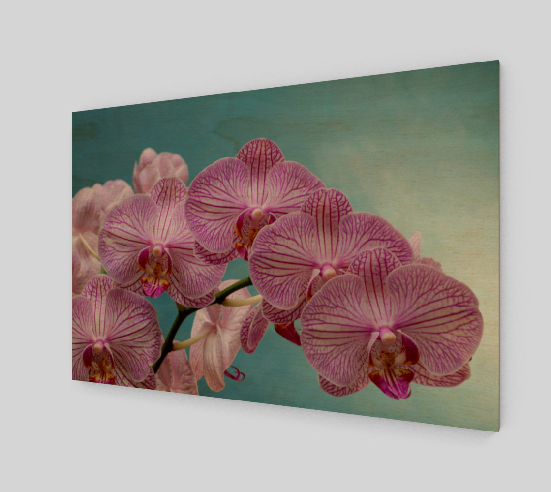purple orchid preview #1