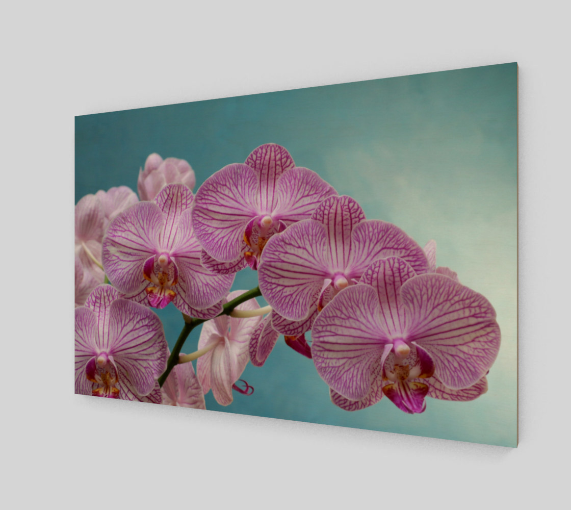purple orchid preview #2