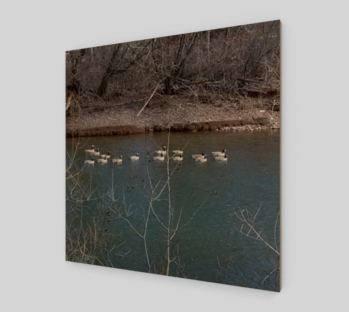 Canadian Geese On The Boise River Wall Art canvas preview #1