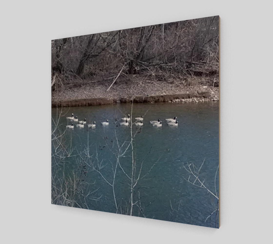 Canadian Geese On The Boise River Wall Art canvas preview #2