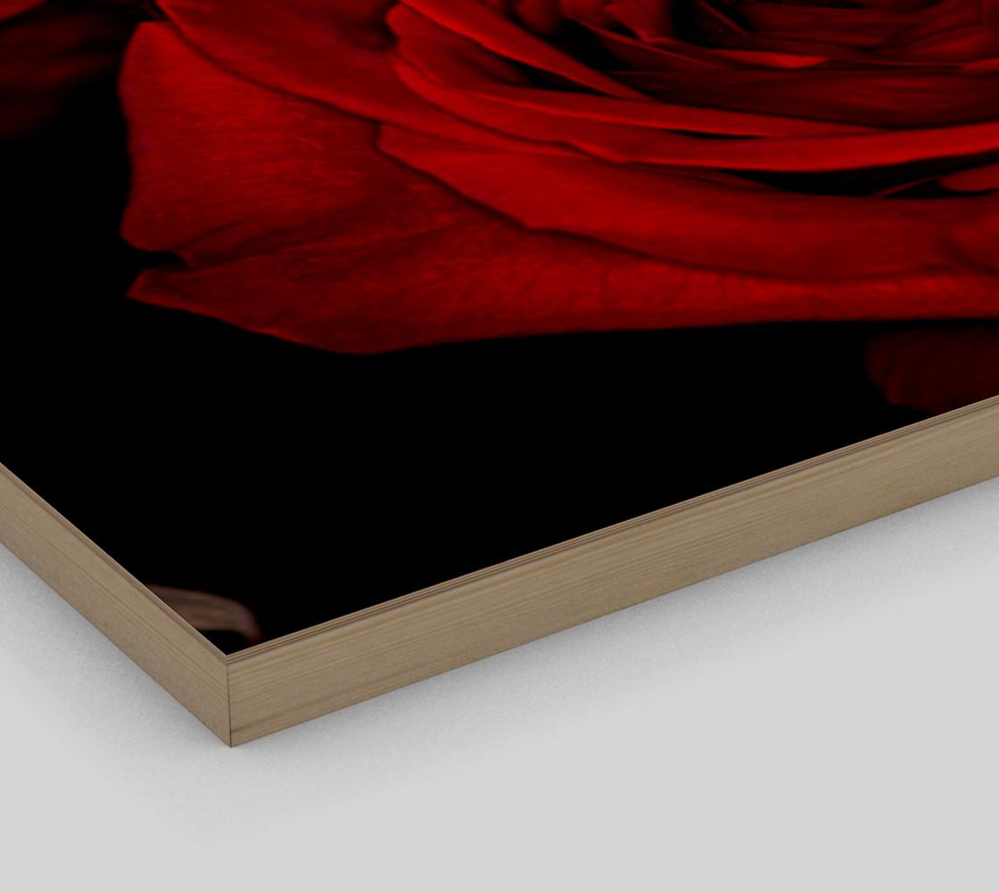 Aperçu de Red Roses #3