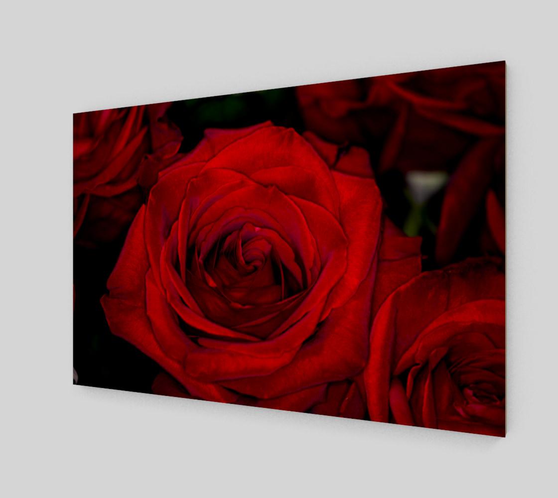 Aperçu de Red Roses #2