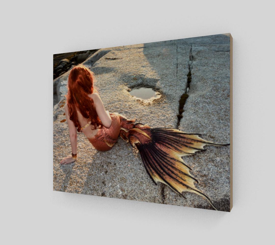 Mermaid Back Print  preview #2