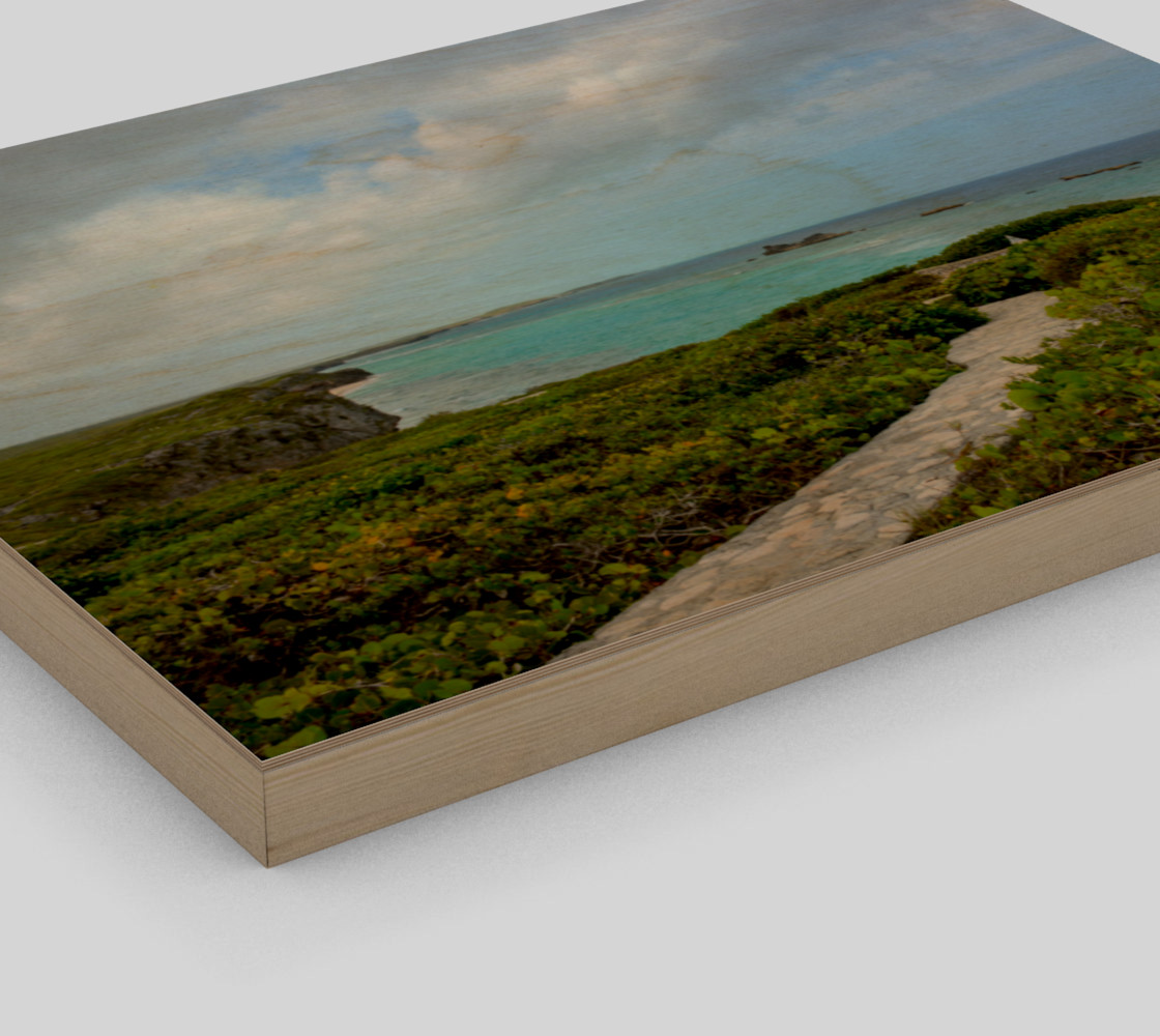 Path to the Secret Beach at Mudjin Harbor on Middle Caicos Wall Art preview #3