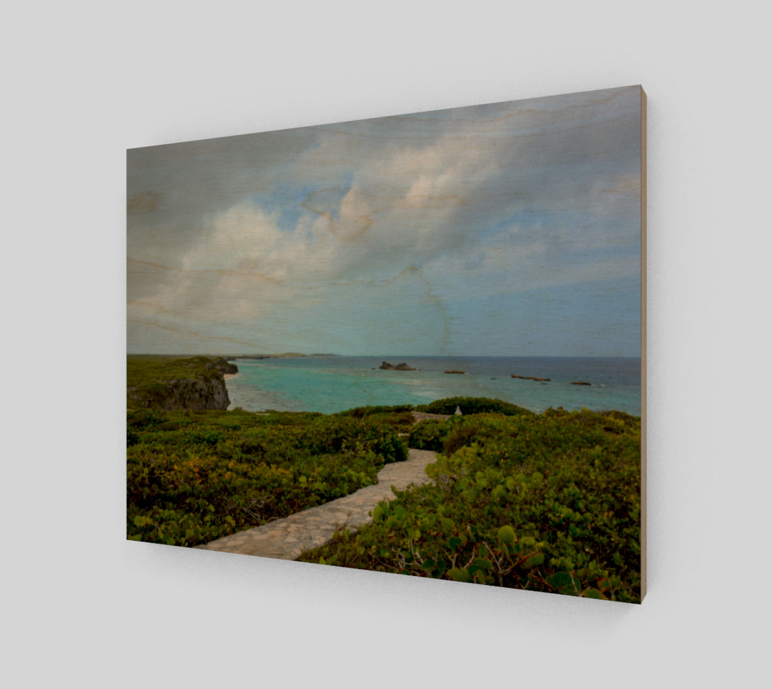 Path to the Secret Beach at Mudjin Harbor on Middle Caicos Wall Art preview #1