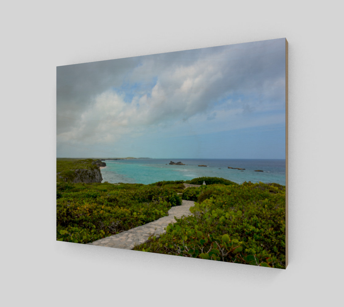 Path to the Secret Beach at Mudjin Harbor on Middle Caicos Wall Art preview #2