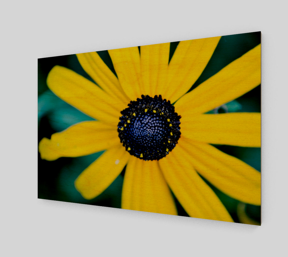 Summer is Coming Wall Art preview #1