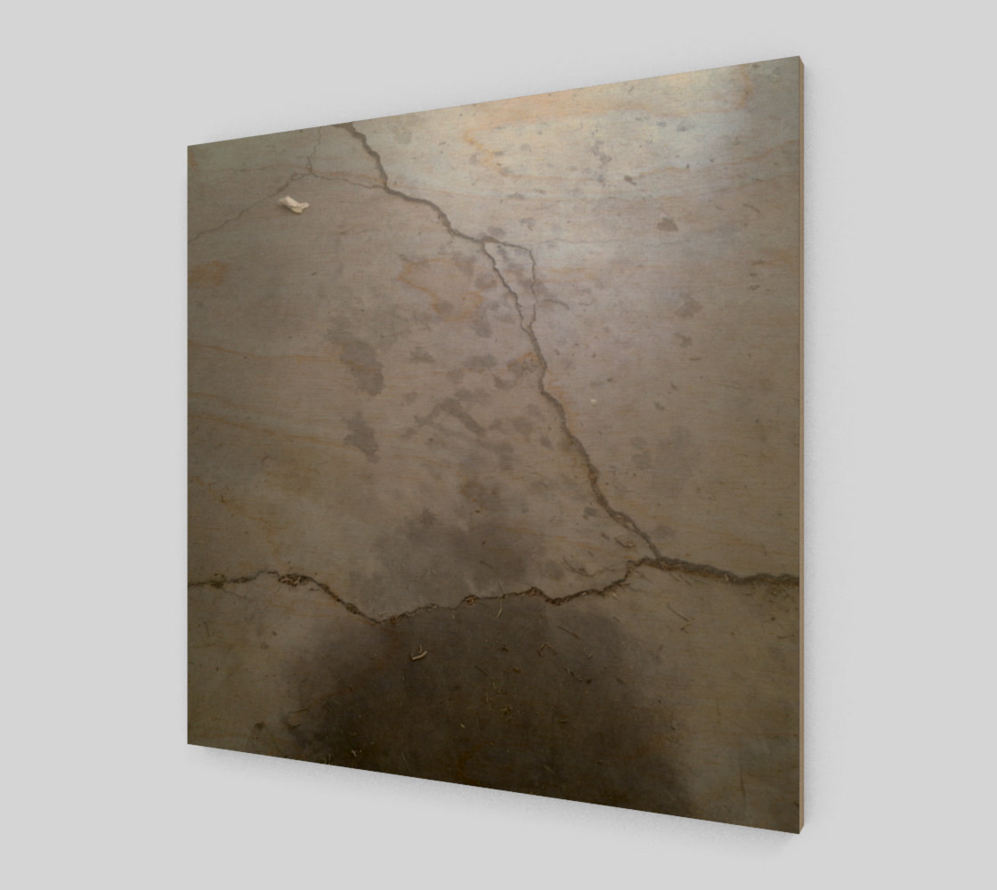 Cracked Driveway Wall Art preview #1