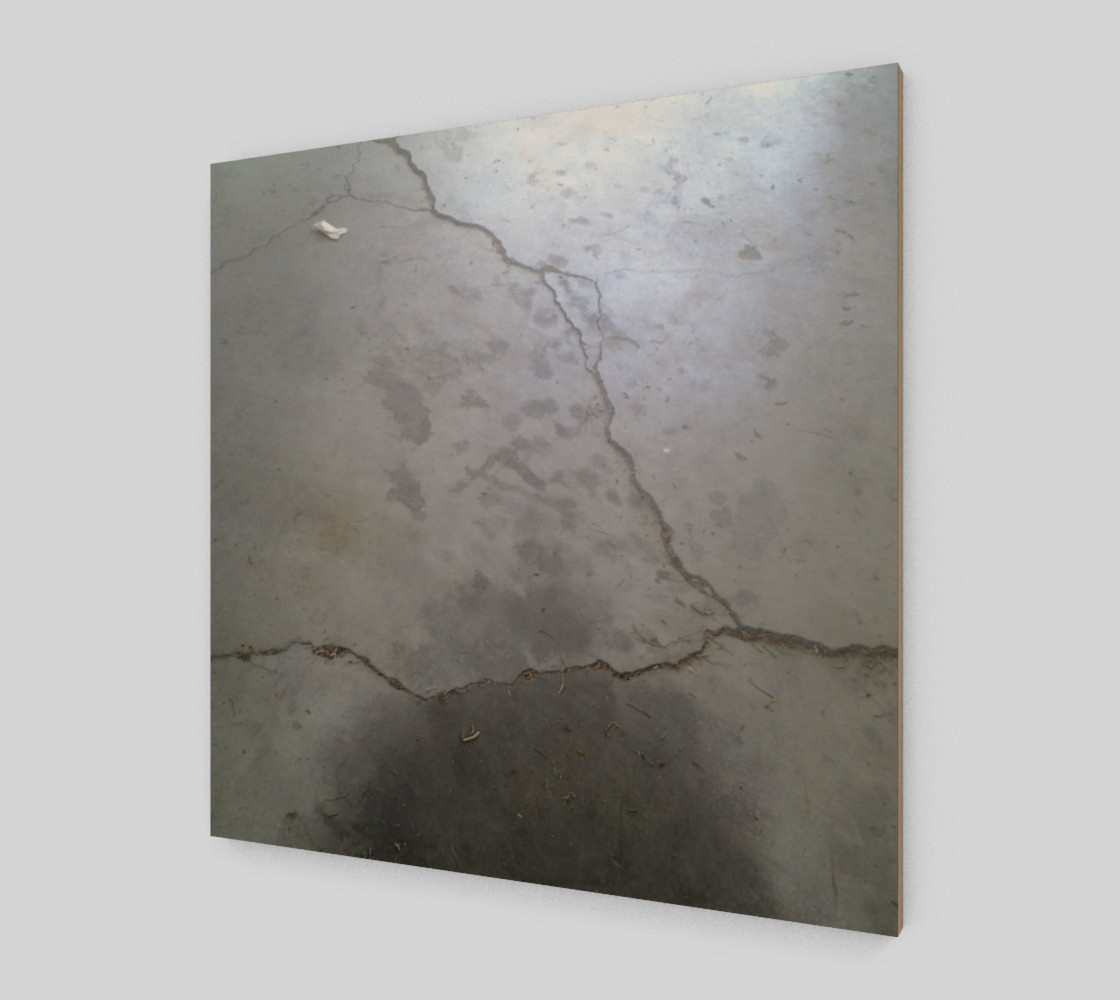 Cracked Driveway Wall Art preview #2