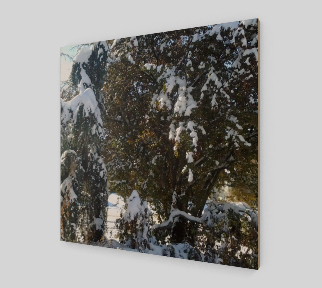First Snow Wall Art preview #2