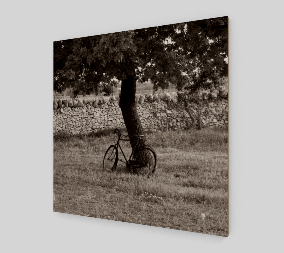 Utterly Italy Martina Franca Bike 24x24 preview #2