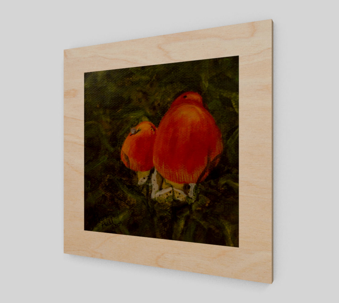 Red Mushrooms preview #1