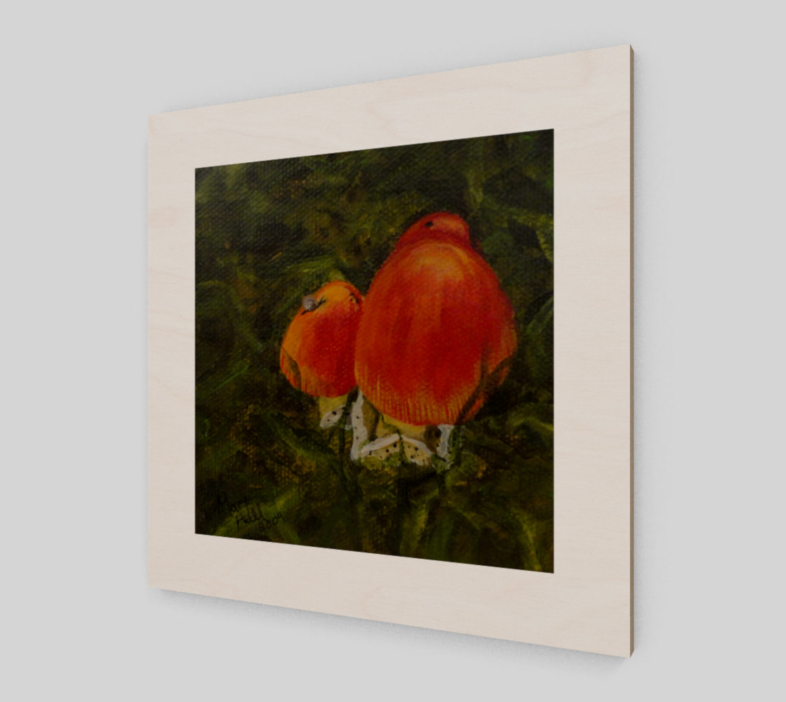 Red Mushrooms preview #2