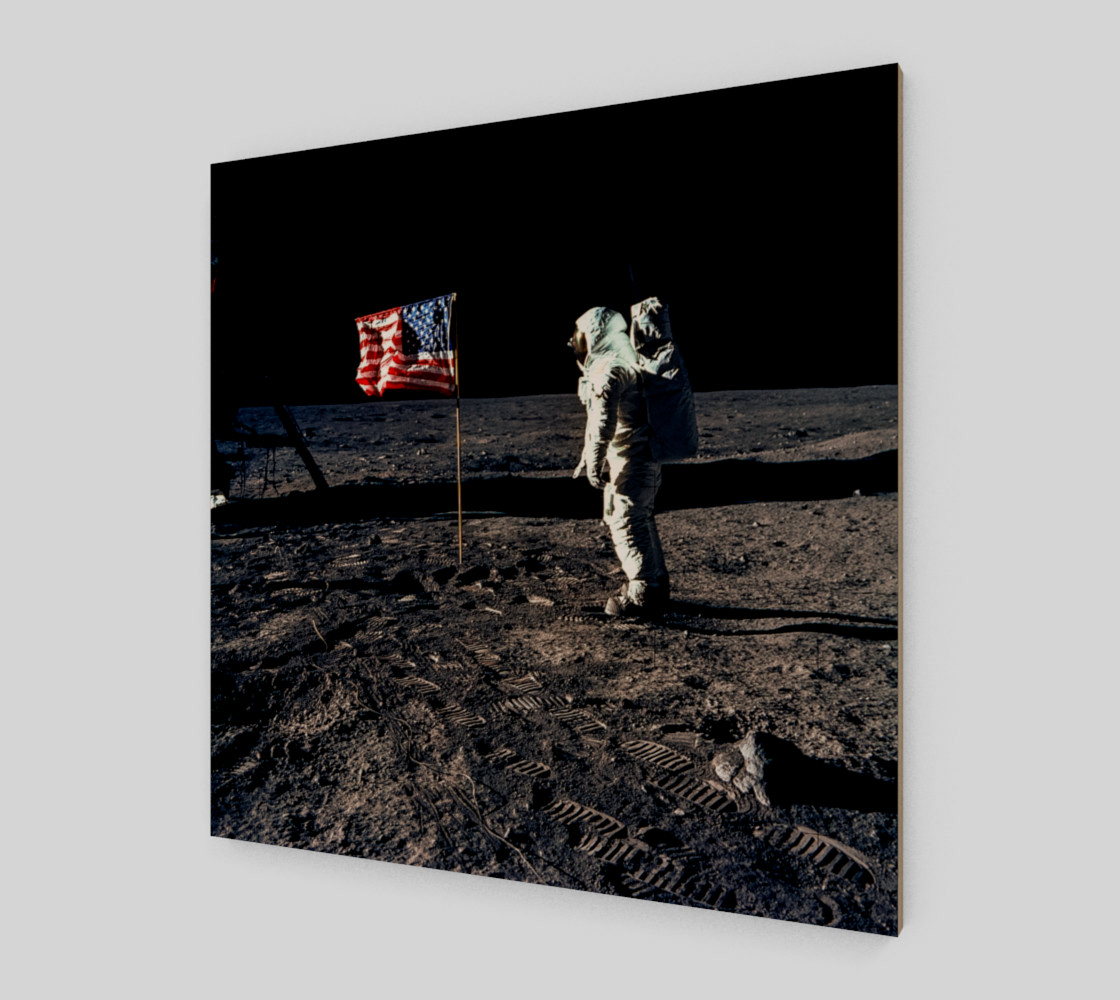 Buzz Aldrin and the U.S. Flag on the Moon preview #2
