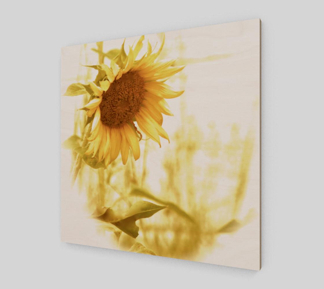 Aperçu de Sunflower in the Light #2