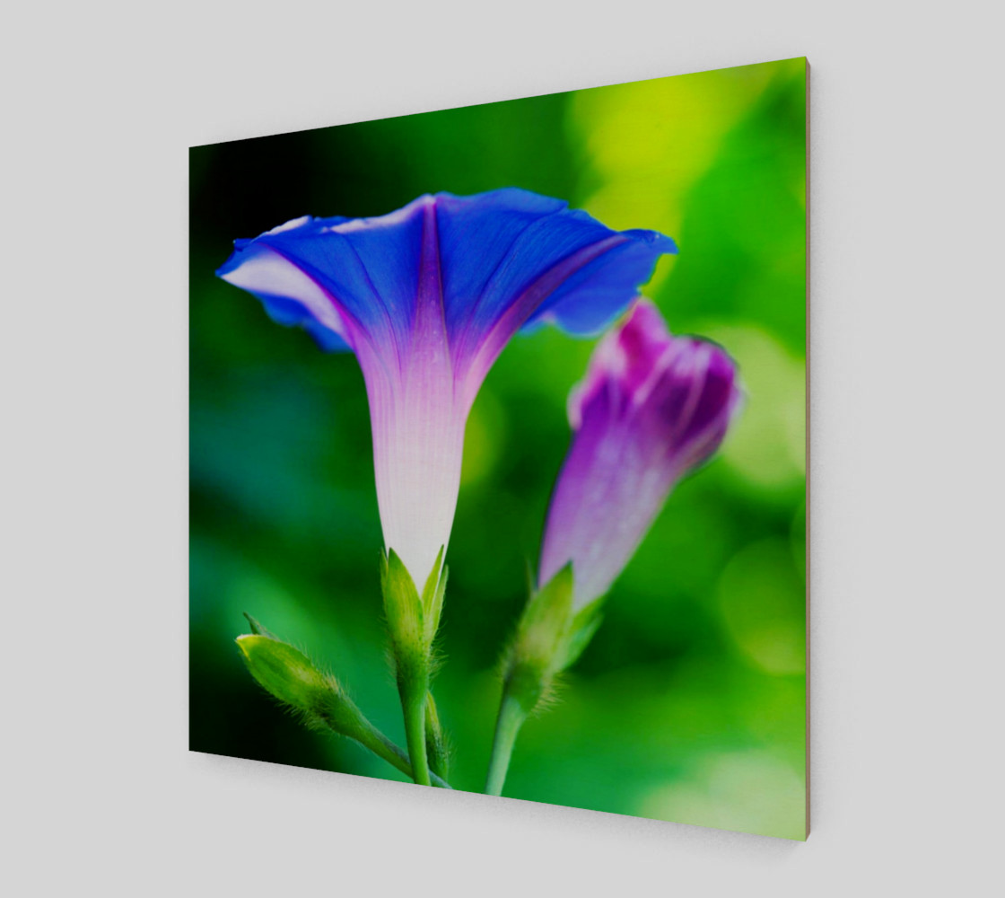 Trumpet Flower  preview #2
