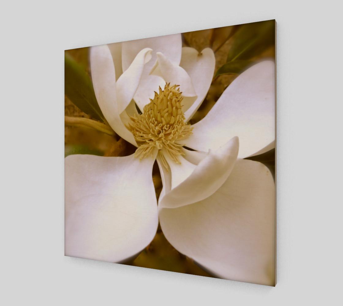 Aperçu de Angelic Magnolia #2