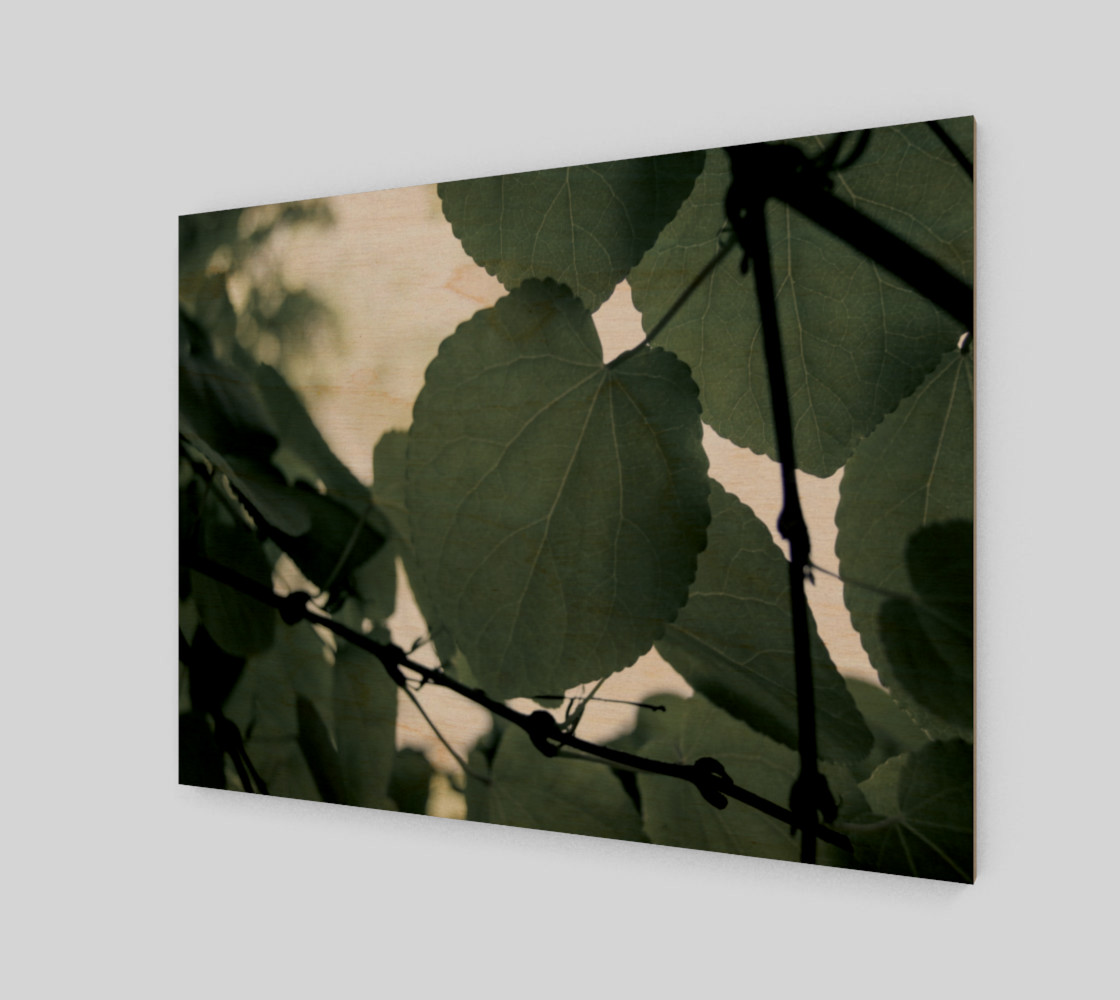 Green Leaves preview #1