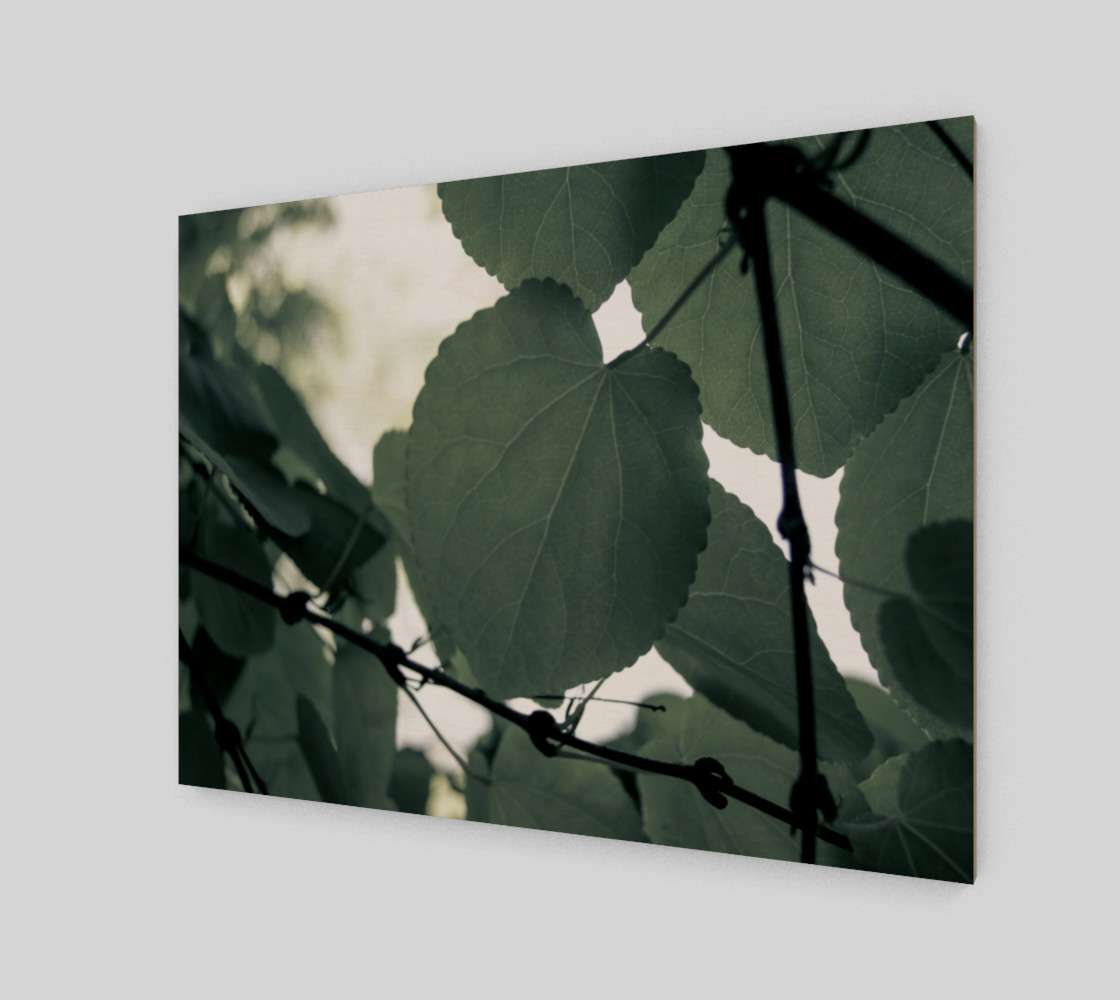 Green Leaves preview #2