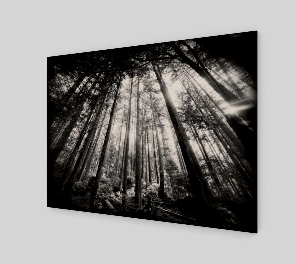 Aperçu de DSL100911-058 Holga infrared 7000px #2