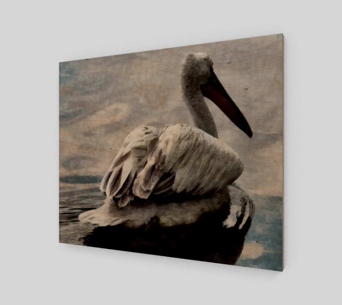 Lonley Pelican(24x20) preview #1