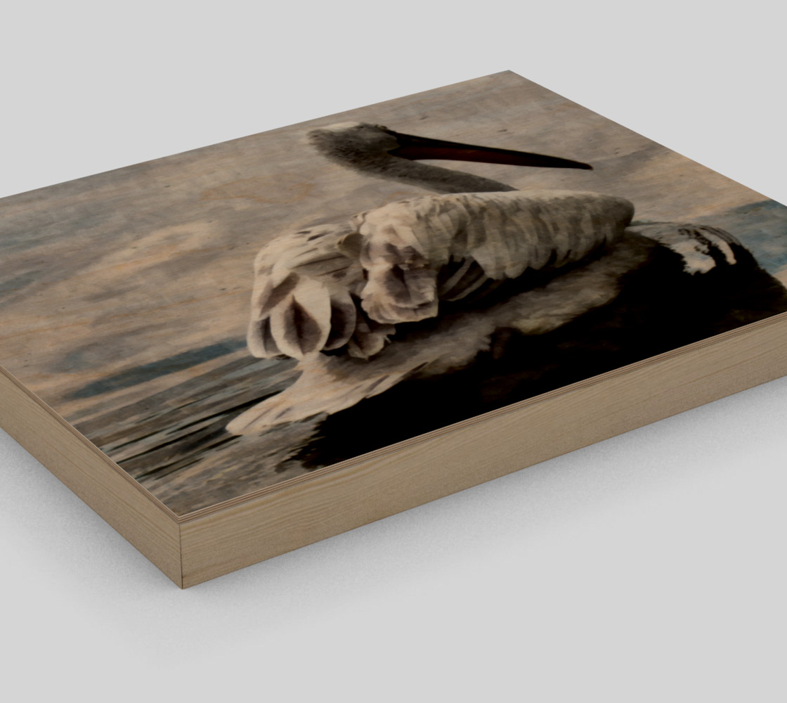 Lonley Pelican(10x8) preview #3
