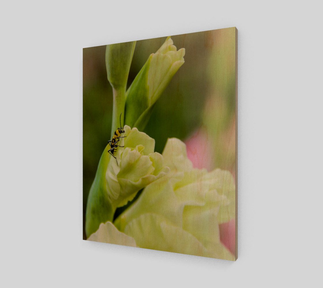 Bee on a gladiola flower preview #1